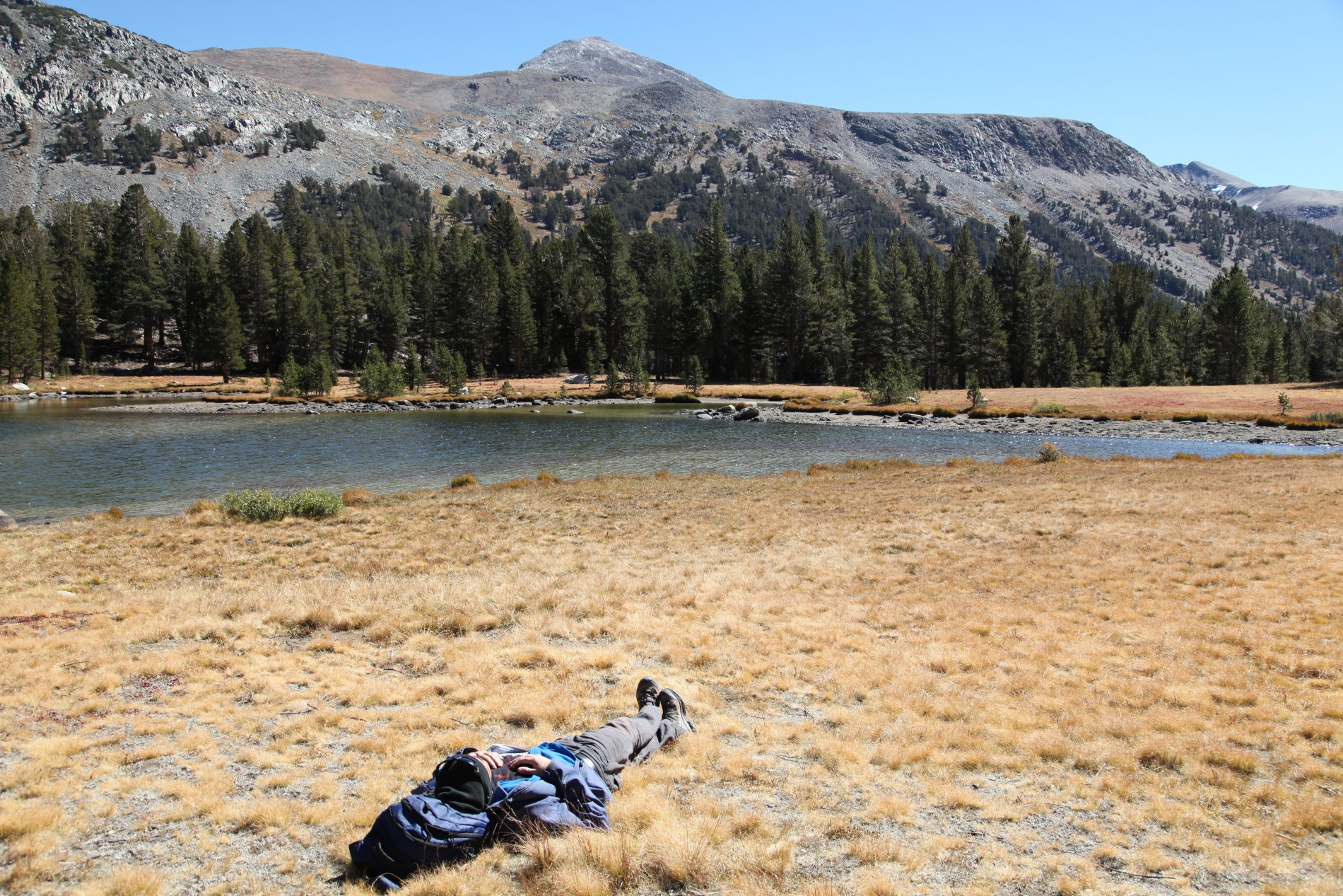 IMG_1255.JPG: Mountain climb dream, Tioga Pass