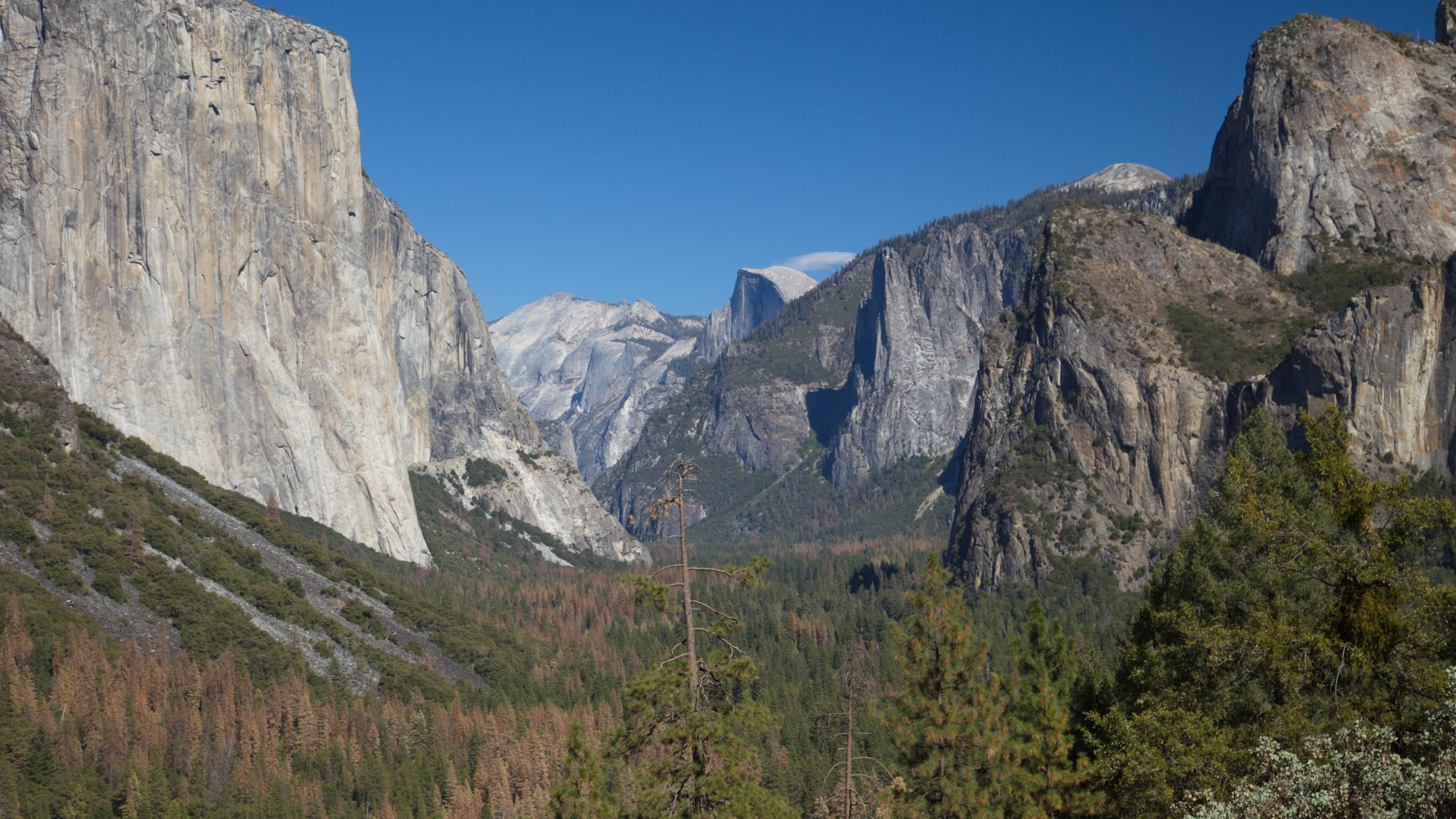 IMG_1338.jpg: Yosemite Valley