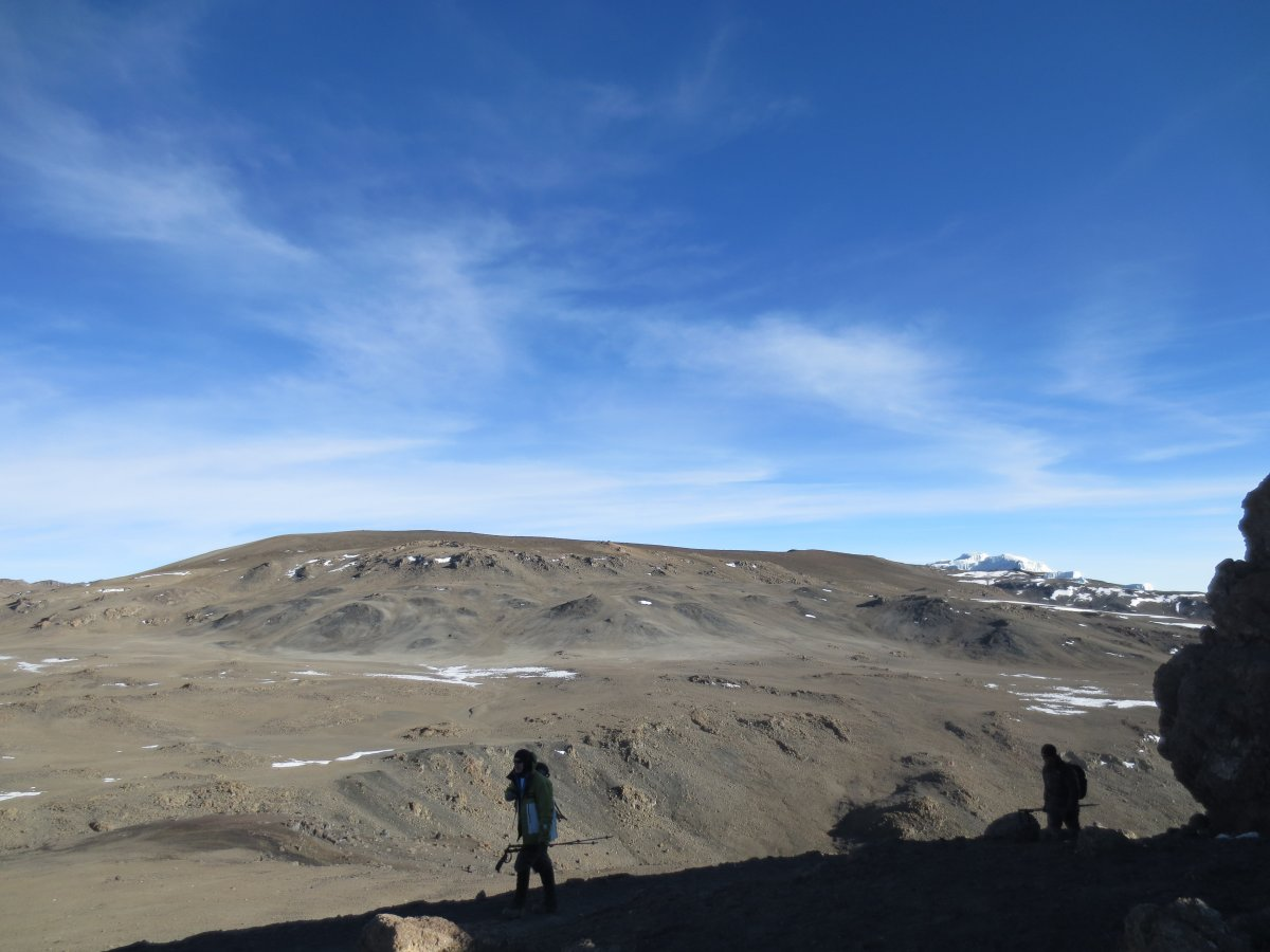 Picture of d6-Barafu to Summit to Mweka Camp-5895m
